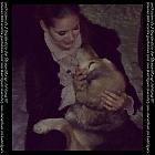 thumb_Vysotskaya_282929.jpg
