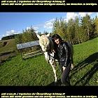 thumb_kseniia86pronchenko_281829.jpg