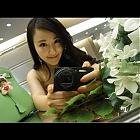 thumb_anatha4.jpg