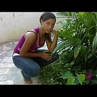 thumb_giftdion2010b.jpg