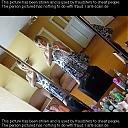 thumb_26_unknown674ij17.jpg