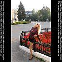 thumb_felomena56k4hp.jpg