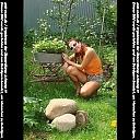 thumb_kotova11t1c94.jpg