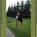 thumb_kotova3k2fl9.jpg